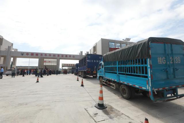 中国南方最大的牛羊批发交易中心广西忻城牛羊批发交易中心正式开业!